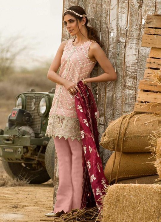 Pink Organza Festival Wear Pant Style Salwar Mix Hit Suits By Kilruba SC015619