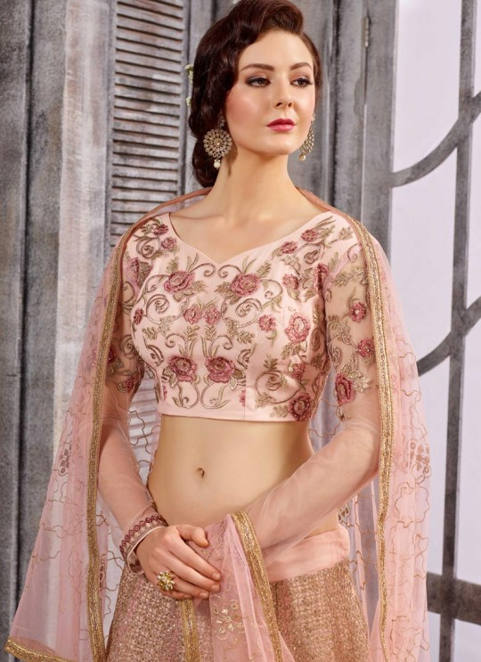 Pink Net Embroidered Skirt Kameez 1611-1619 1616 By Bela Fashion
