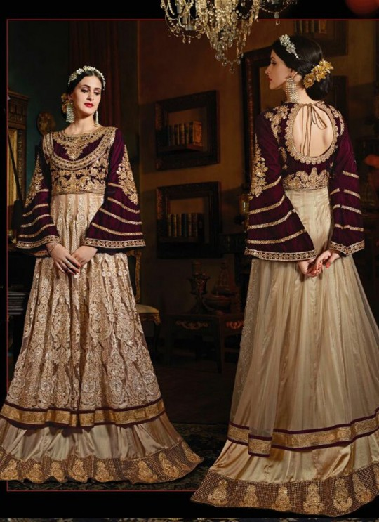 Gold Net N Velvet Floor Length Anarkali Sybella-73