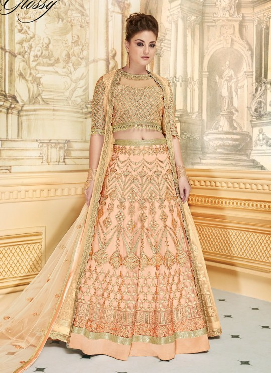 Pastel Orange Net Lehenga Choli SAPPHIRA Vol-2 7277 By Glossy